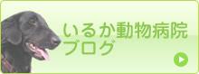 bnr_blog_o