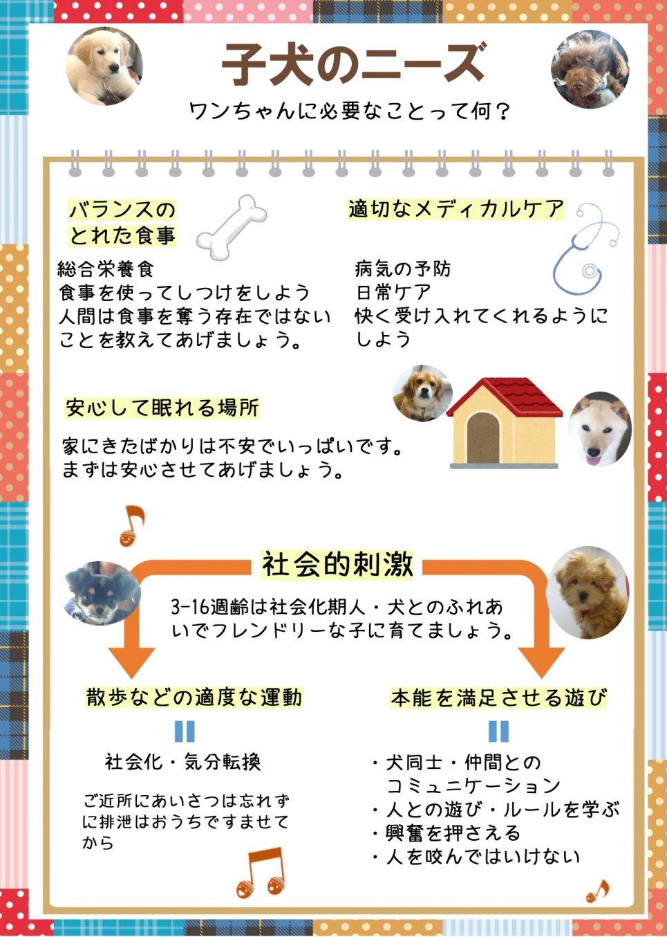 17.子犬のニーズ ver2 _page-0001